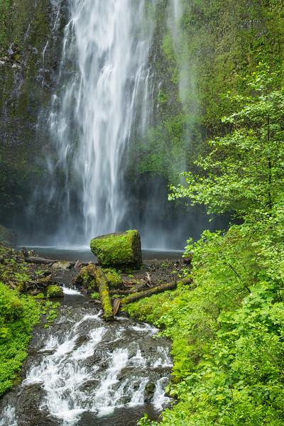 Multnomah Falls-8.jpg