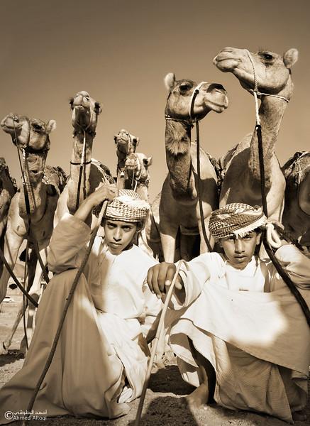 Camel Race  (67).jpg