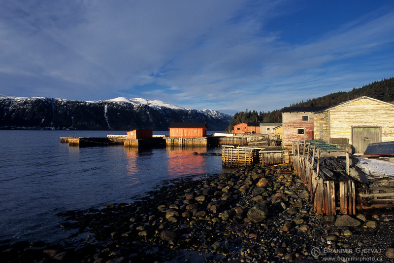 Wooden pier and fishing shacks. Norris Point, Newfoundland