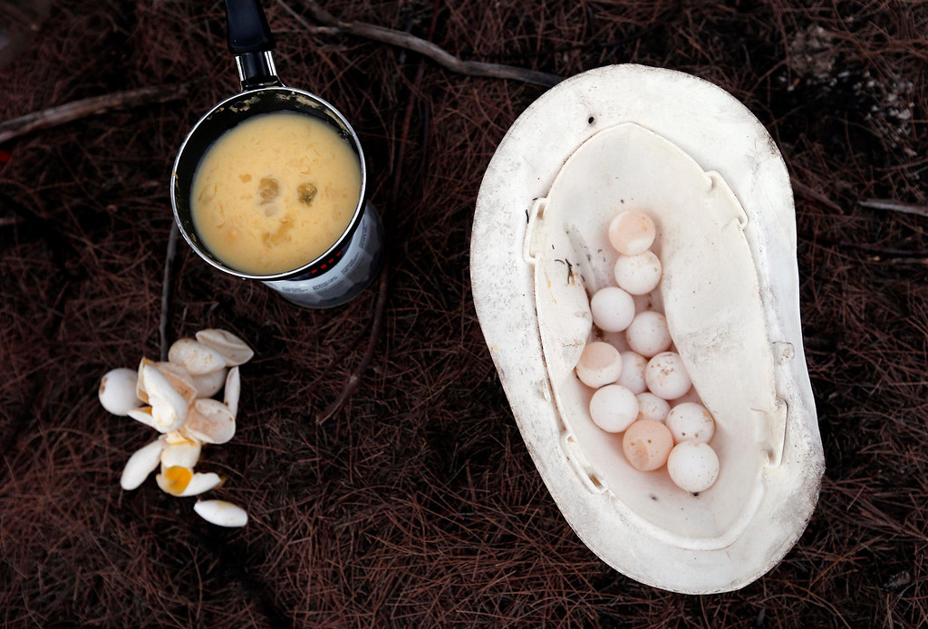 . Lance-corporal Vinnie Rami, an indigenous soldier from Australia\'s North West Mobile Force (NORFORCE) unit, cooks turtle eggs on Wigram Island, part of the English Company Islands, located inside Arnhem Land in the Northern Territory July 18, 2013. NORFORCE is a surveillance unit that employs ancient Aboriginal skills to help in the seemingly impossible task of patrolling the country\'s vast northwest coast. NORFORCE\'s area of operations is about 1.8 million square km (700,000 square miles), covering the Northern Territory and the north of Western Australia. Aboriginal reservists make up a large proportion of the 600-strong unit, and bring to bear their knowledge of the land and the food it can provide. Fish, shellfish, turtle eggs and even insects supplement rations during the patrol, which is on the lookout for illegal foreign fishing vessels and drug smugglers, as well as people smugglers from neighboring Indonesia.  Picture taken July 18, 2013. REUTERS/David Gray