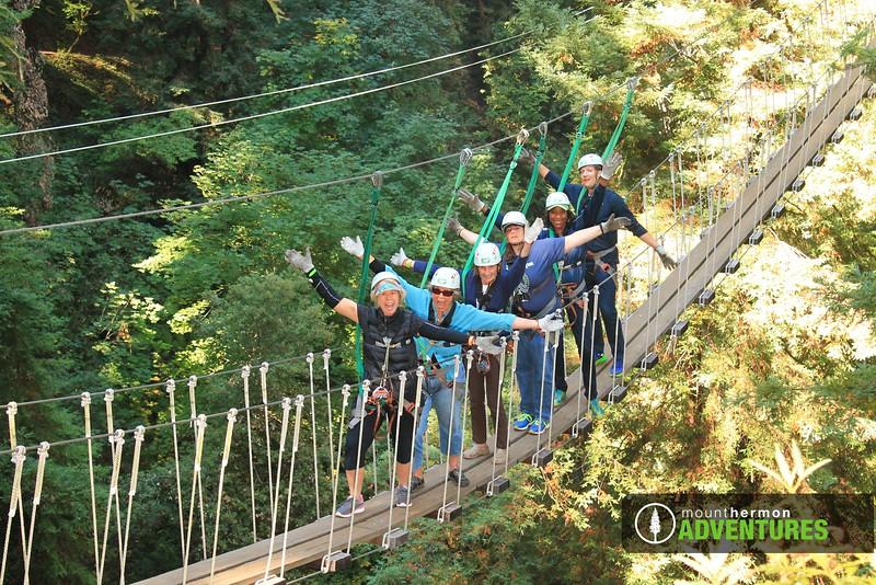 redwood_bridge_1473444368567.jpg
