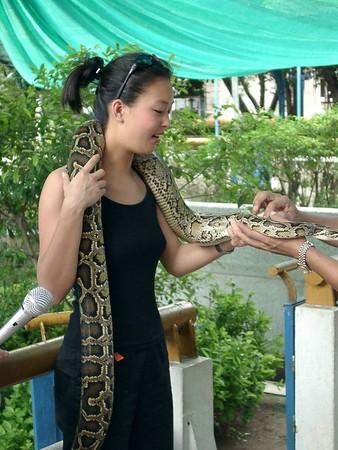 Thai Red Cross Snake Farm