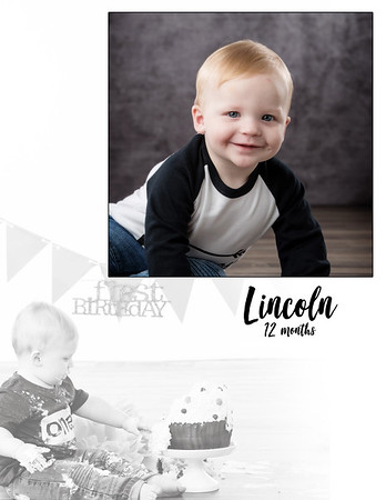 Lincoln 12 Months