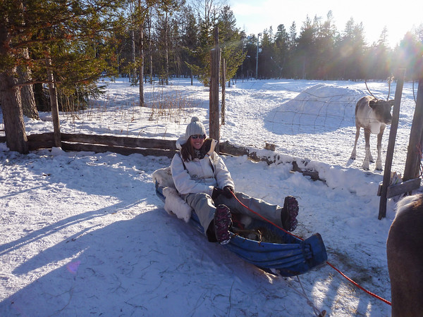 In a More Traditional Sled
