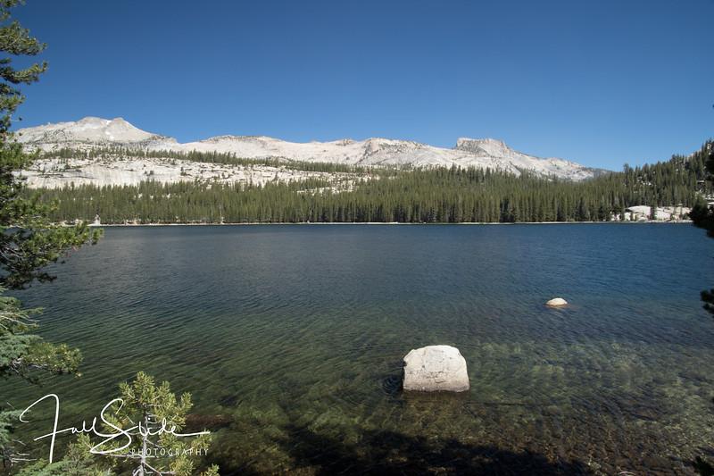 Yosemite 2018 -13.jpg