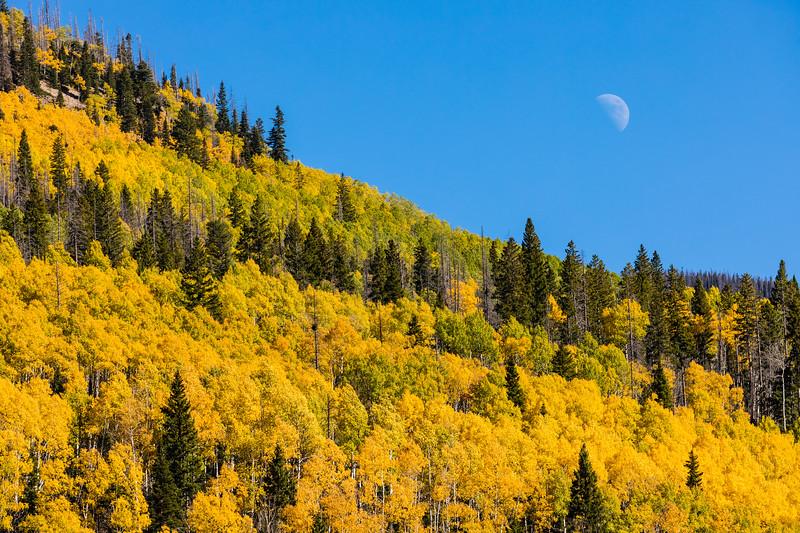 Colorado19_5D4-1553.jpg