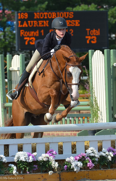 80th Annual Sussex Horse Show