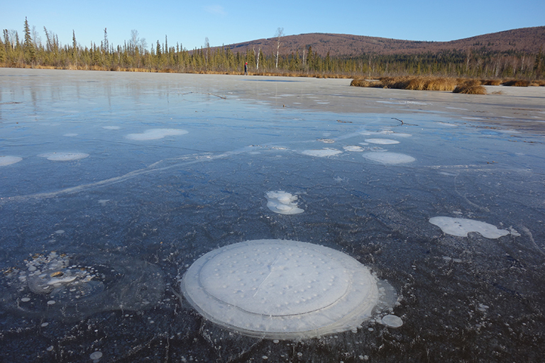 """NASA, """"Methane bubbles up from the thawed permafrost at the bottom of the thermokarst lake through the ice at its surface. Credit: Katey Walter Anthony/ University of Alaska Fairbanks"""""""