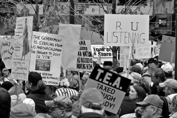 Capitalist Protest 2009
