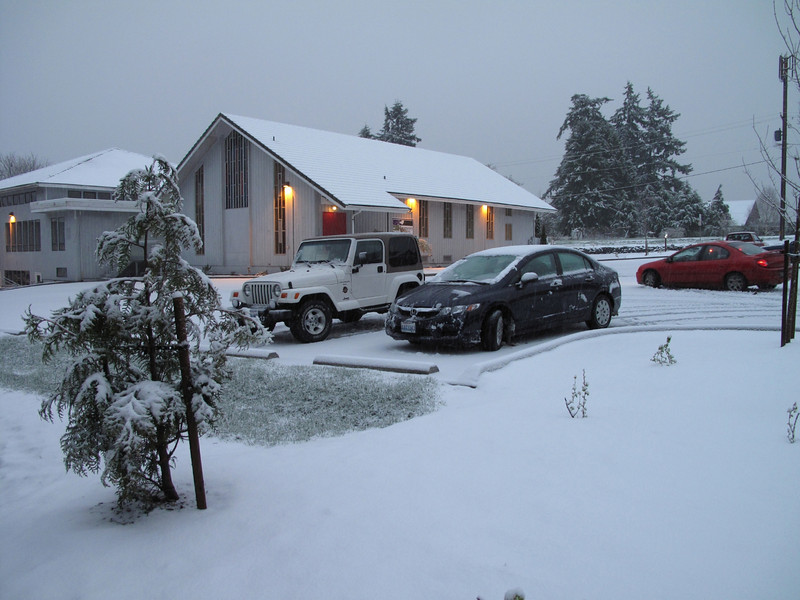 We did not receive any snow this winter. It took an arrival of Spring to get covered with it. Langley, Whidbey Island. March 22, 2013