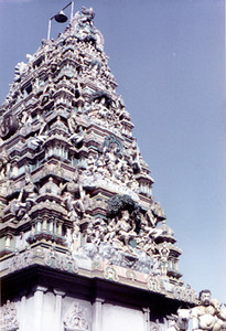 3 temple top SHANKAR