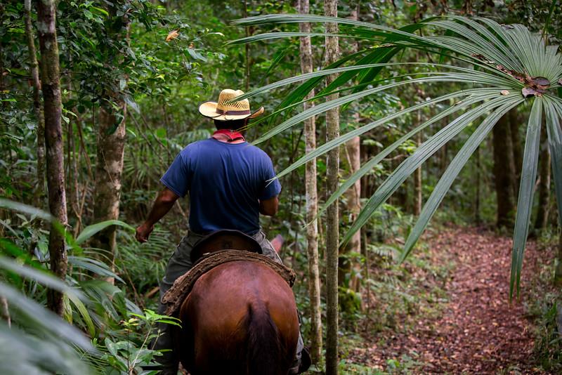 Pratt_Belize_22.jpg