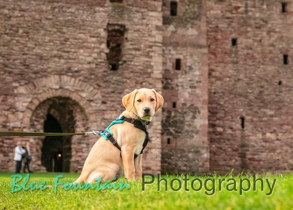 Ella does Tantallon Castle