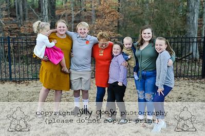 Sealey Christmas 2020