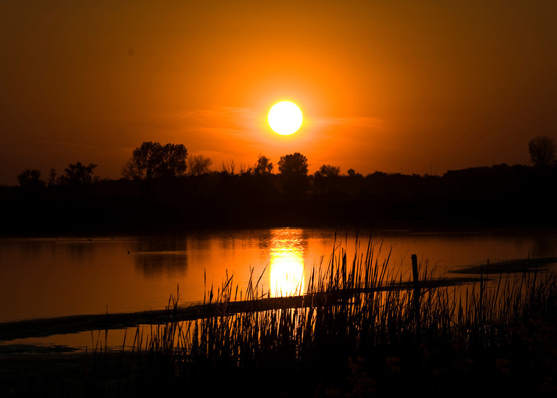 Horicon Marsh  Sun .jpg