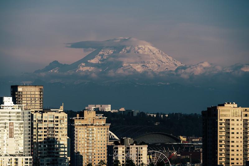 SeattleKerryParkMay2019-4.jpg