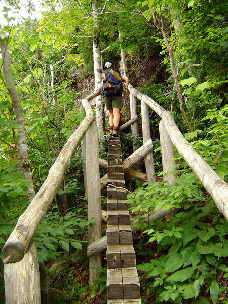 ARE WE IN VENEZUELA? No, we're still in Acadia, but this section of the trail certainly looks like it. I've forgotten just what trail this ladder bridge is on, but it's in the Jordan Pond area. Believe it or not, this whole structure really is quite stable.