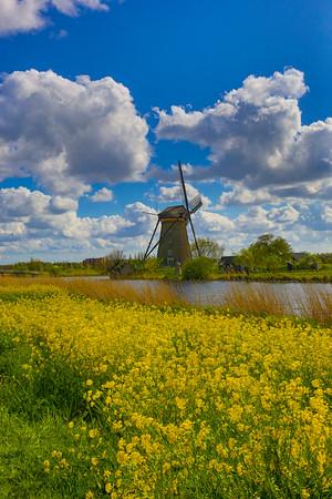 Tulips and Windmills 2015 Uniworld