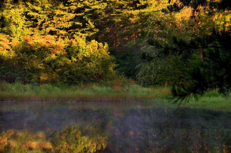 Opal pond.jpg