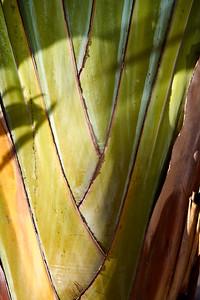 details of Lanzarote