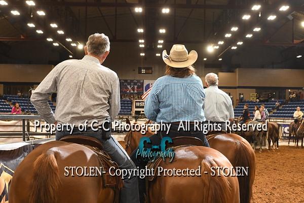 #11 RH 220-330 RSNC Finals 2018 Fort Worth TX