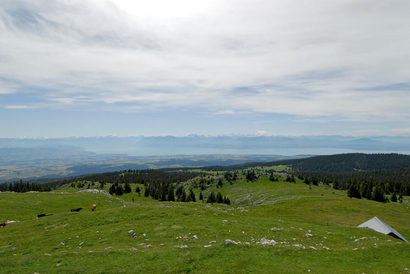 070626 7266 Switzerland - Geneva - Downtown Hiking Nyon David _E _L ~E ~L.JPG