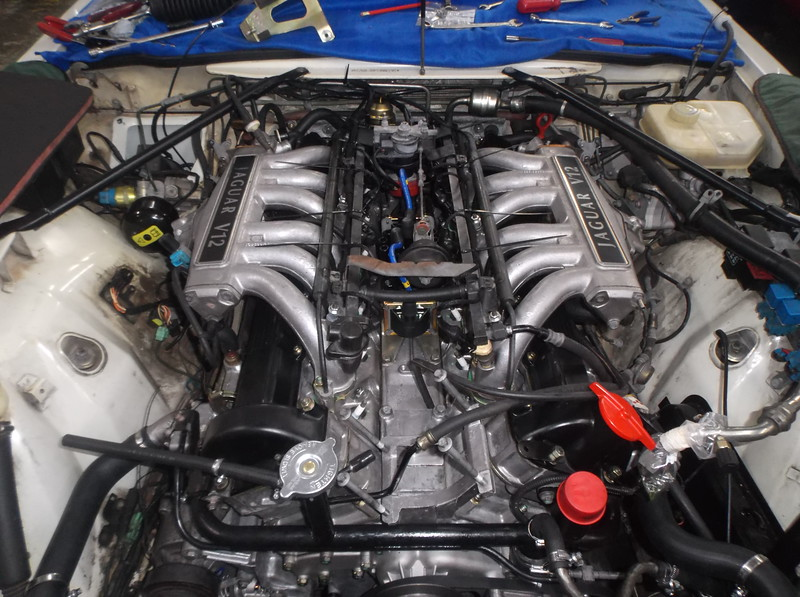 DSCF7949.JPG