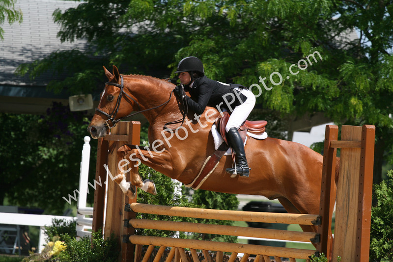 Hunter/Jumper Horse Shows