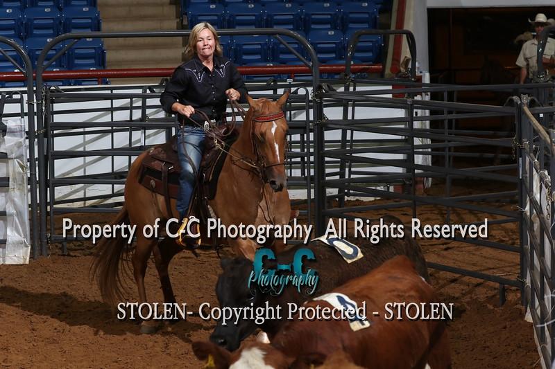 RSNC 2017 Sadie Hawkins #11 HC