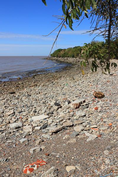 Ecological Preserve - Built from debris