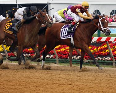 2011 Pimlico - BLack Eyed Susan Stakes