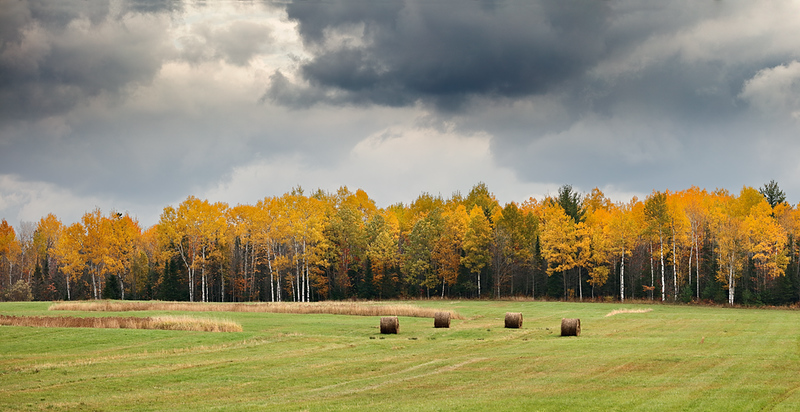 Autumn Hay - Bruce Crossing (Ontonagon County - Upper Michigan)