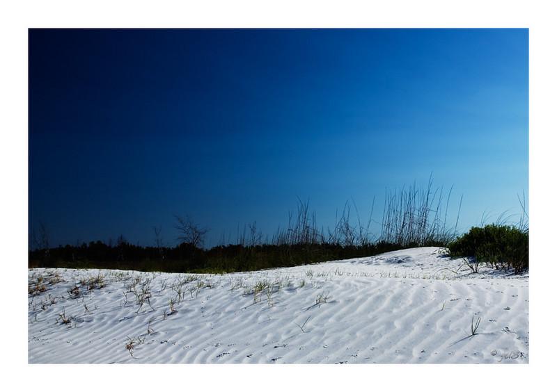 Dunes - North Beach