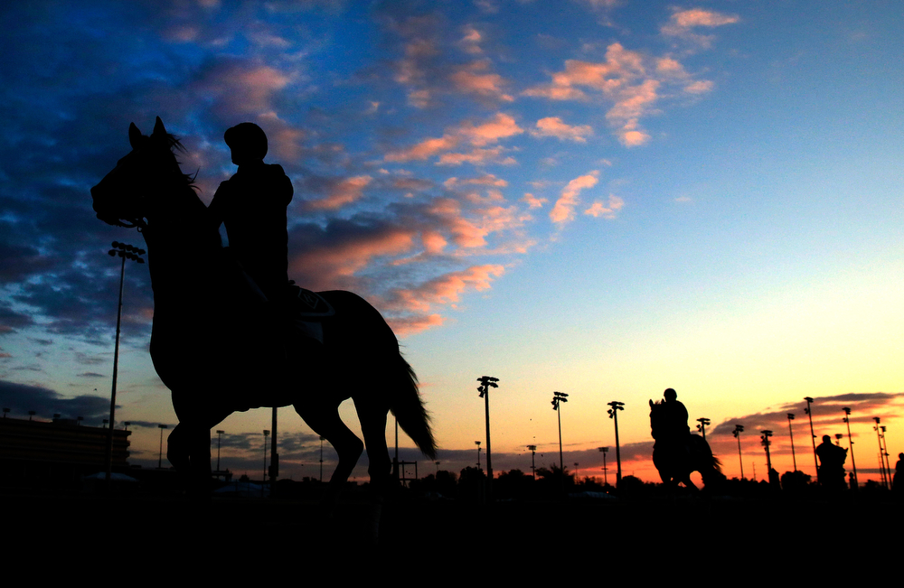 . Horses walk onto the track at sunrise during early morning workouts at Churchill Downs on May 1, 2014 in Louisville, Kentucky.  (Photo by Jamie Squire/Getty Images)