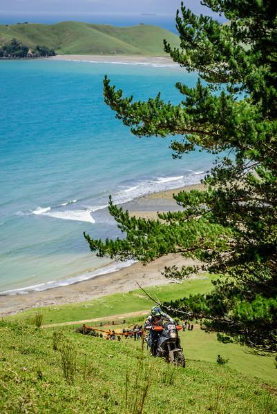 2018 KTM New Zealand Adventure Rallye - Northland (667).jpg