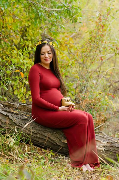 Lexy Maternity-1027.jpg