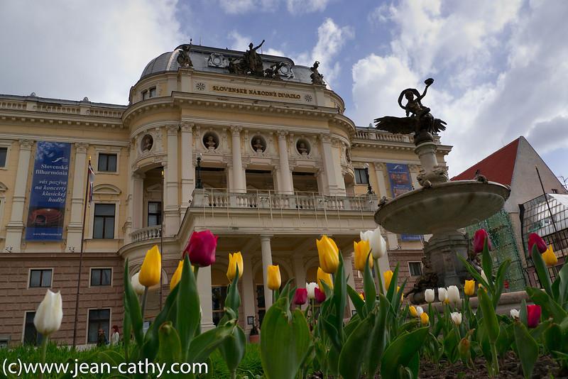 Danube_River_Bratislava_2011 (202 of 221)