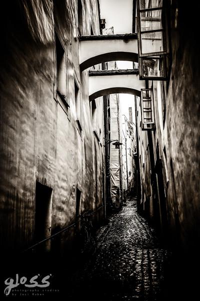 1gloss photography studios ©-65.jpg