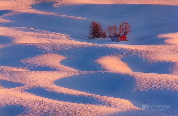 """Winter Barn Palouse""