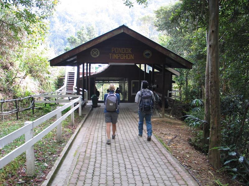 Kinabalu (3).jpg