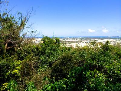 2014 Puerto Rico