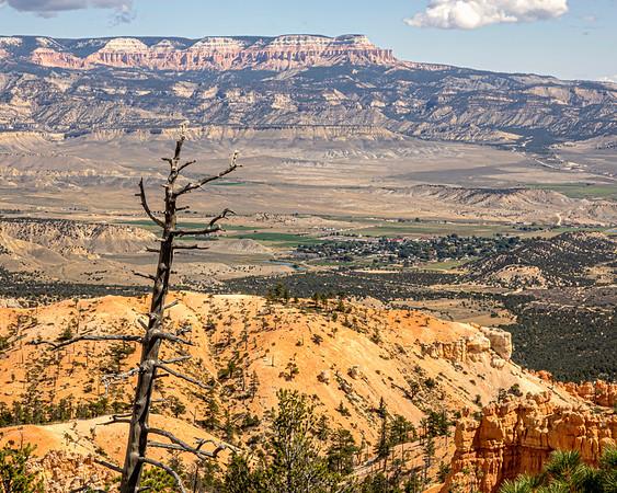 Yellowstone and Grand Tetons National Park May 2019