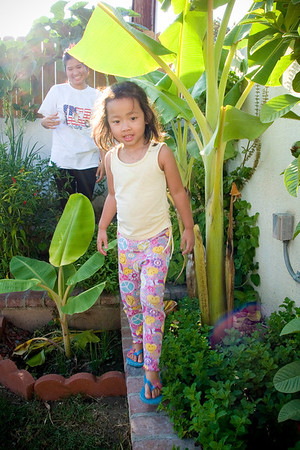 Backyard Photos: September 21, 2011