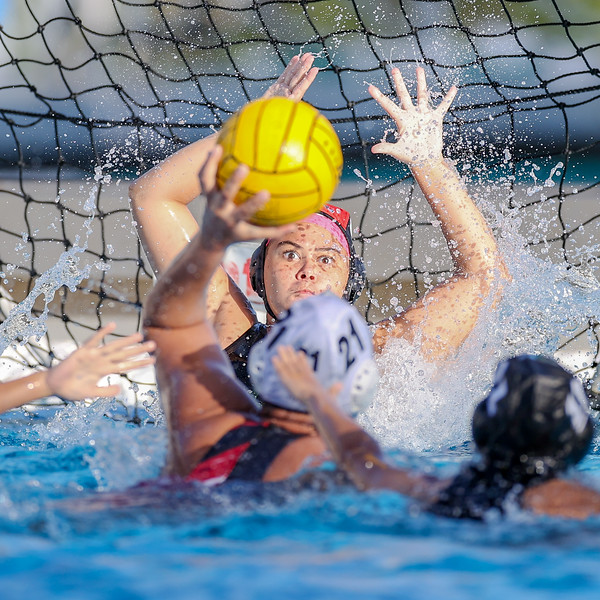 Ransom Everglades Girls Water Polo, 2021