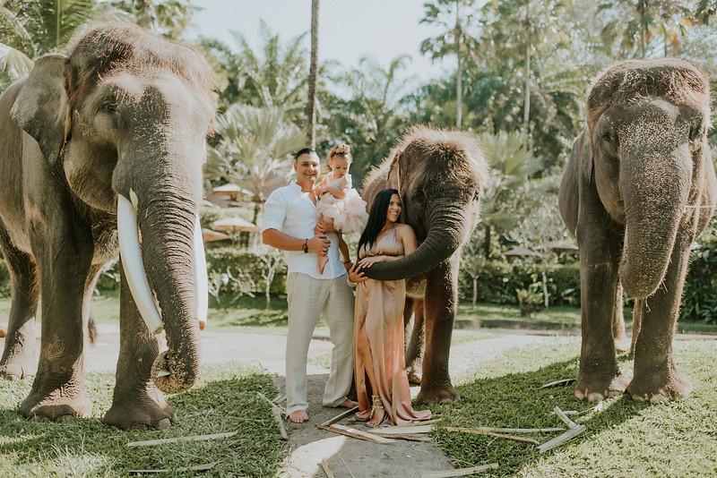 VTV_family_photoshoot_elephants_Bali_ (15).jpg