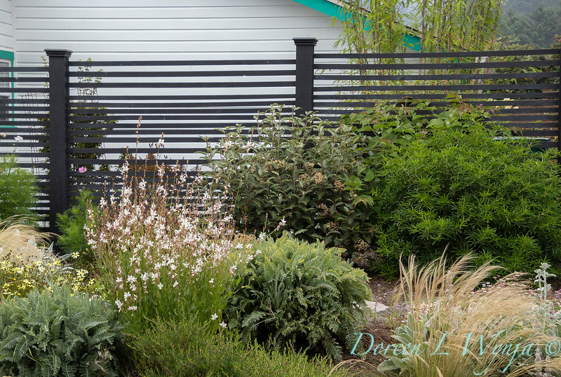 modern wooden garden fence_3565.jpg