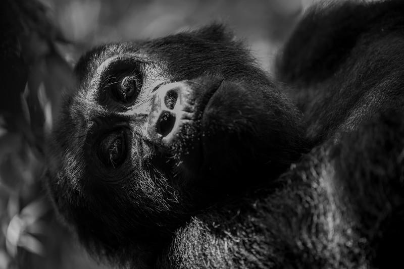 Uganda_T_Gor-1642.jpg