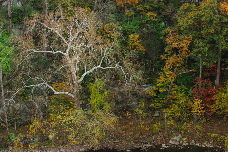 2016-11-05 Harpers Ferry - WV 389.jpg