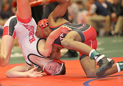 Elyria beats Wadsworth, falls to LaSalle at state duals
