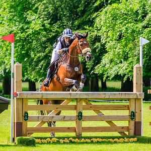 Houghton International CICO***